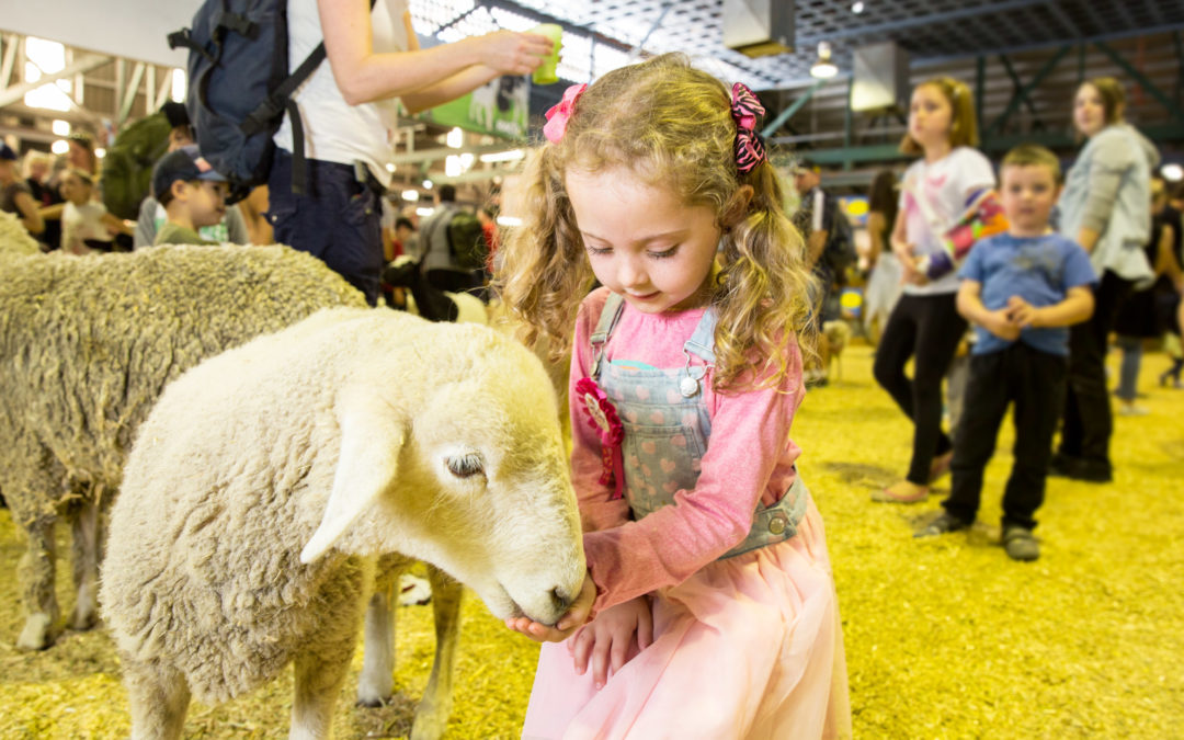 EKKA Royal Queensland Show 2019